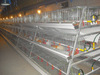 Broiler Cage Poultry Equipment For Chicken Farm