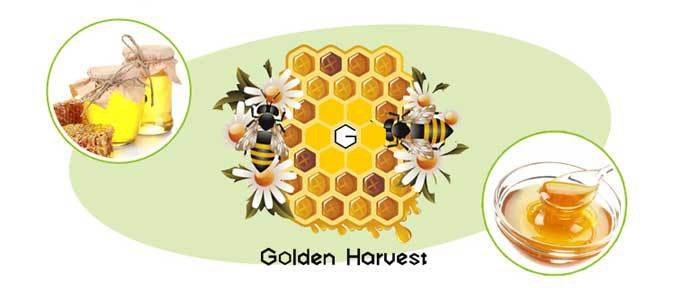 Wholesale High Quality Natural Bee Pollen