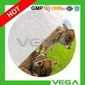 Tilmicosin Premix 10% / 20% / alimentação animal fabricantes