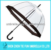 Transparent kid's umbrella