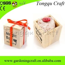 Best selling wooden gadget unique magic bean with wooden box