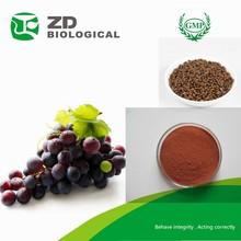 Grape seed P.E. 95% proanthocyanidins