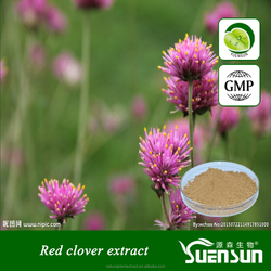Natural herb extract Red Clover Extract