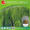Low price high quality white willow bark p e