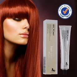 Private label low ammonia best professional hair color raw material