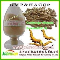 Cordyceps Extract-health food supplement