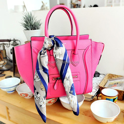 2015 new style fashion design woman silk bag stole(SP433S-1)