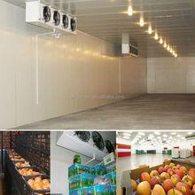 fruits cold room for orange