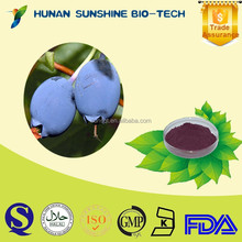 Solvent Extraction Type Powder Form Water Soluble Bilberry Extract / Vaccinium vitis-idaea Extract