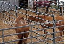 farm horse round pen