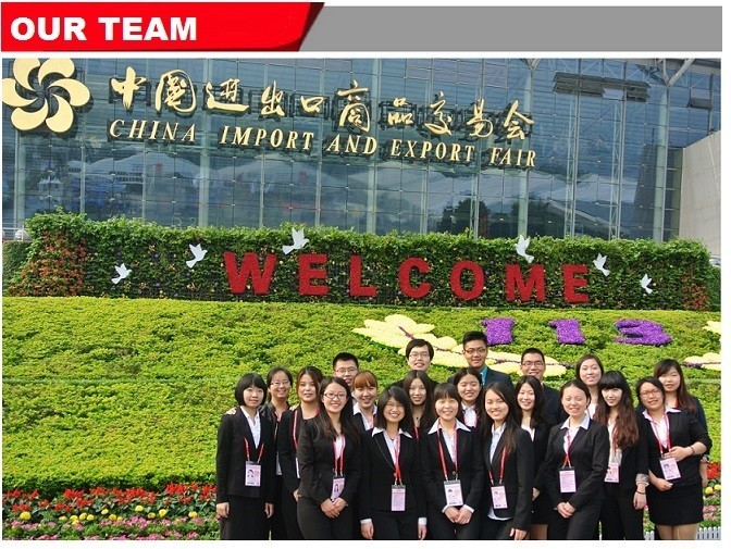 our sales team of shearing machine,press brake machine and cnc plasma cutting machine.jpg