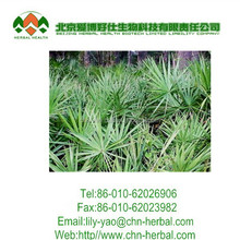 High quality Prostate function improve Saw Palmetto extract 45% fatty acids capsules