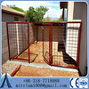 Australian standard Large outdoor galvanised chain link dog kennels & dog cage & dog runs