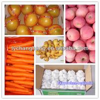 2013 Garlic Vegetables Price List