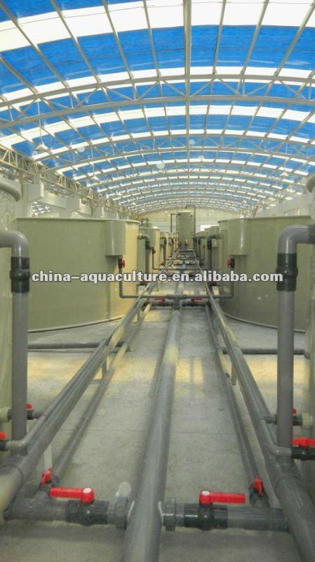 Indoor fish farm buy indoor fish farm recirculated fish for Indoor fish farming
