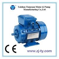Y2 Series 30 hp electric motor