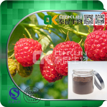 Factory Supply 100% Natural Bilberry Extract Fruit Extract