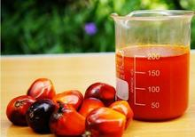 Crude Palm Oil,Cooking Oils