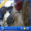 lowest price chicken wire mesh/ anping hexagonal mesh gabion box
