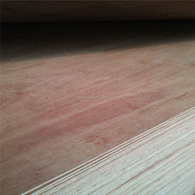 live knot face and back plywood for package