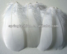 Wholesale goose feather