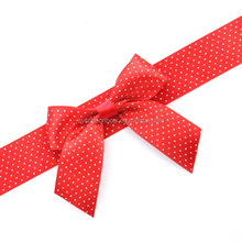 Wholesale fancy butterfly ribbon bow for gift wrapping