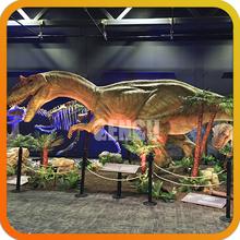 Simulate Dinosaur Indoor Playground Equipment Dinosaur