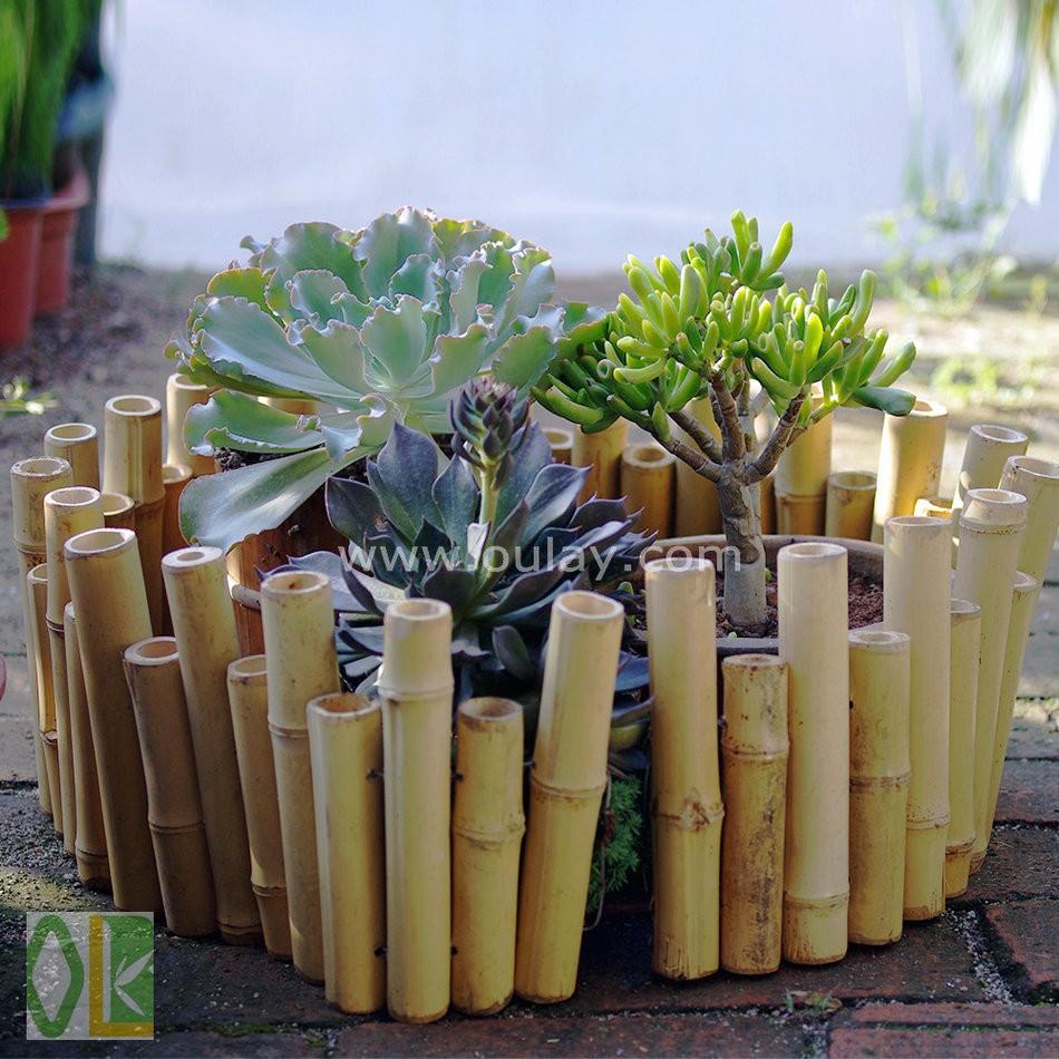 Petit bambou jardin cl ture bambou p le gros cl tures treillis et portails id de produit - Tuteur bambou gros diametre ...