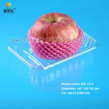 specialized snack fruit tray SGL-1410