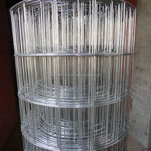 welded wire mesh/stainless steel welded wire mesh/manufacturer anping factory