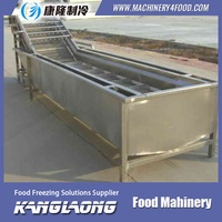 High Quality Vegetable&Fruits Industrial Washer