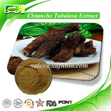 For Man Healthy/Herb Extract /Cistanche Tubulosa Extract