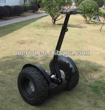 electric car 2 wheels