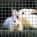 Houses for lovely rabbits/easy to assemble and disassemble for cleaning/high quality
