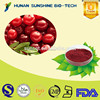 Medical Raw Material Eye Protection 25% Proanthocyanidins Cranberry Extract