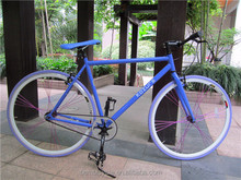 2014 New Style Racing Fixed Gear Sports Field Track Vehicle Bike Bicycle - Fashion Men Women Back Riding Version