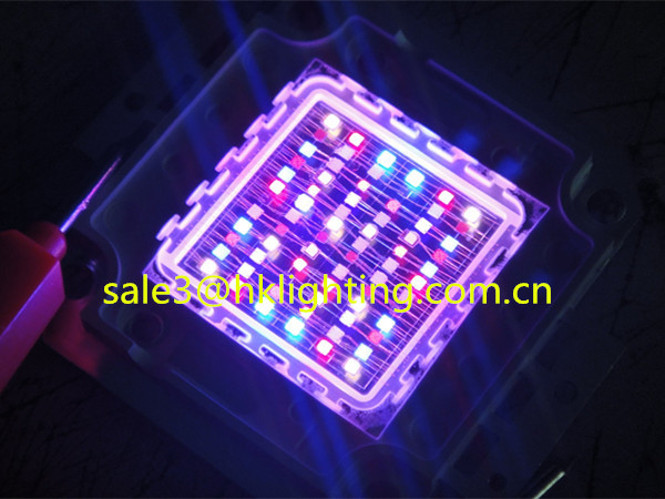 Factory Price Epileds 40mil chips 10w RGB LED Module (4).jpg
