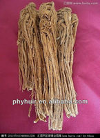Natural extracts Angelica Extract Ferulic acid