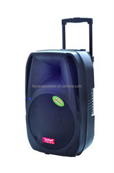 """12""""professional portable battery multimedia professional stage hand and wheels fashion speaker box with usb,sd,fm,trolley(F-19)"""