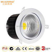SAA Certificate 6 inch Warm White COB 30W LED Downlight
