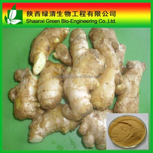 Factory Supply Ginger Root Extract Gingerol 10% Cas:23513-14-6/ Supply Pure Natural Ginger Extract Powder Curcumin 95% Gingerol