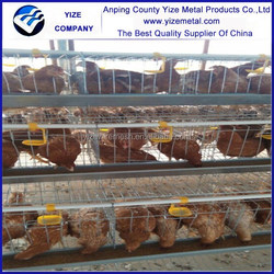 Hot sale 3 layer chicken cage /chicken egg poultry farm/chicken house (manufacture)