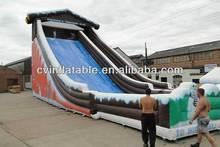 newest toboggan inflatable water slide