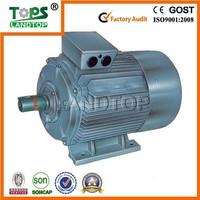TOPS Y2 Three Phase 300kw motor