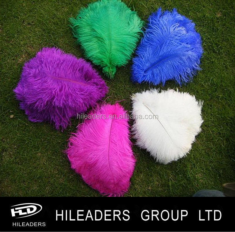 ostrich feather..