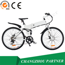 36V~48V High Quality Adult 2-wheeled Cool Blushless Motor Electric bike