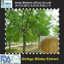 Top Quality Organic Ginkgo Biloba Extract 24:6