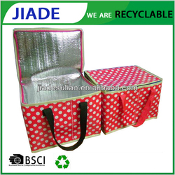Plastic Cooler Bag/Ice Cream Cooler Bag/Wholesale Thermal Insulated Cooler Bags