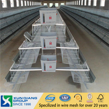 Professional Galvanized automatic egg chicken layer cage for poultry farm