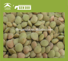 canadian green lentil Chinese green Lentils Chinese Lentils